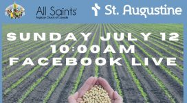 graphic announcing worship for July 12. picture of a field and hands holding grain